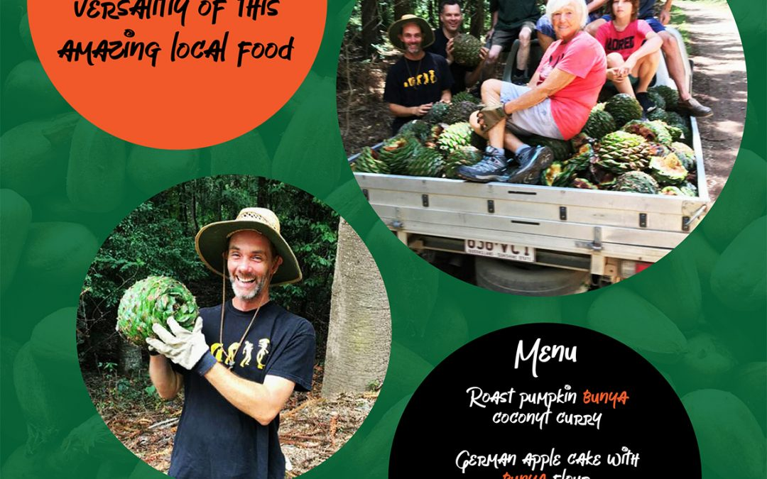 SUN 24 MAR, 5-8PM The Great Cooran Bunya Feast