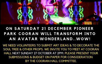27 OCTOBER 2019, 2PM – Calling for Artistic Submissions for Cooran Xmas Lights Event